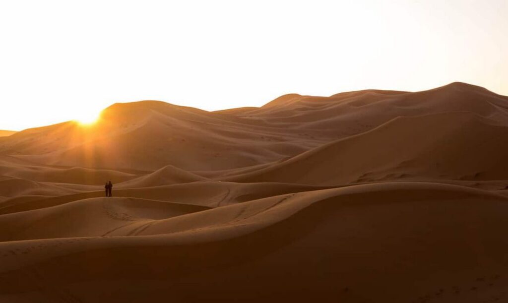 Sunset over the dunes of the Sahara